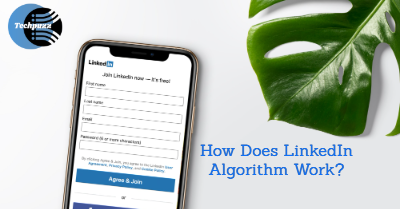HOW DOES THE LINKEDIN ALGORITHM WORK?