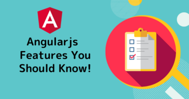 features of AngularJS Developers