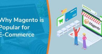 Developing eCommerce Website